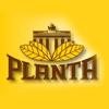 Planta Pipe Tobacco