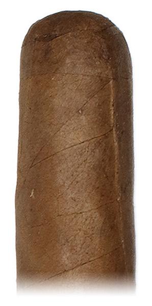 Cain Daytona 543
