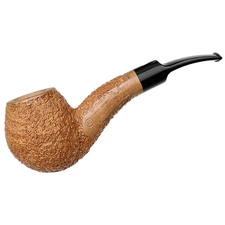 Ser Jacopo Spongia Rusticated Hawkbill (R2)