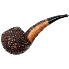 Ser Jacopo Rusticated Hawkbill (R1)