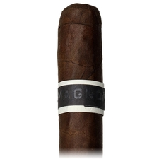 Roma Craft CroMagnon Anthropology