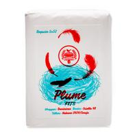 Lost & Found Plume Robusto (10 Pack)